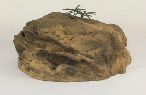 Accent Rock-024