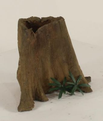 Excellent small cypress stumps for rock and waterfall gardens