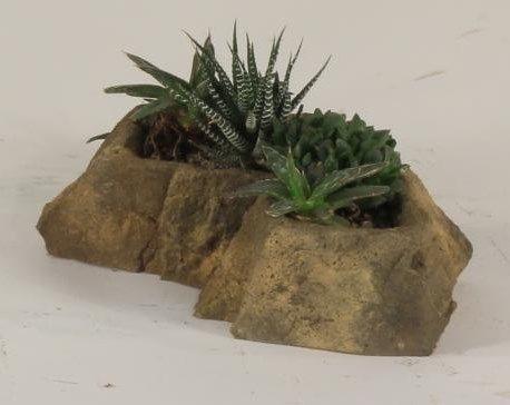 Pot Rock-009