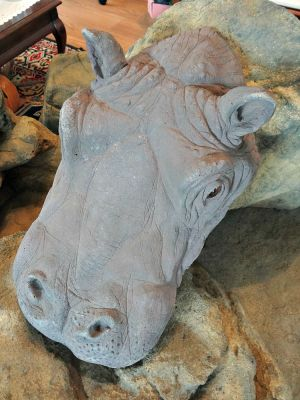Awesome Floating Hippo Head