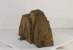 Cool Accent Rocks for Backyard, Garden, Patio and Swimming Pool Landscapes